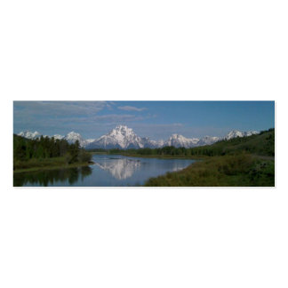Señal magnífica del parque nacional de Teton Tarjetas De Visita Mini