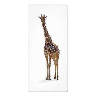 "Señal/Rackcard de la jirafa Folleto Publicitario 4"" X 9"""