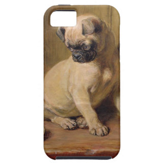 Señal-Tachuela de británico Riviere iPhone 5 Carcasas