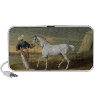 Señale, un árabe gris, con un novio en el desierto iPod altavoz