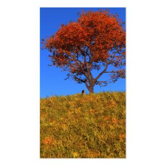 Señales claras del día del otoño tarjetas de visita