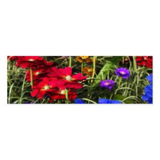 Señales iridiscentes de la primavera tarjetas de visita mini