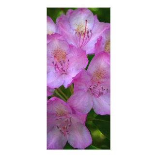 Señales púrpuras rosáceas del rododendro tarjetas publicitarias