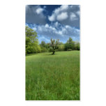 Señales verdes apalaches tarjetas de visita