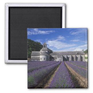 Senanque Abbey, Gordes, Vaucluse, Provence, 2 Inch Square Magnet