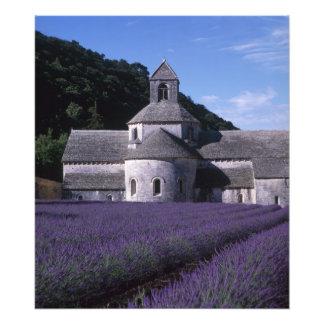 Senanque Abbey, Gordes, Vaucluse, Provence, 2 Photo Print