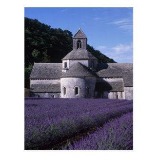 Senanque Abbey, Gordes, Vaucluse, Provence, 2 Postcard