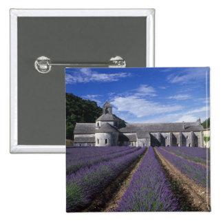 Senanque Abbey Gordes Vaucluse Provence Pin