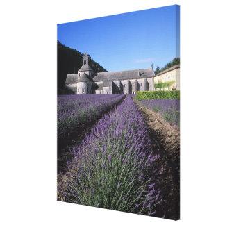 Senanque Abbey Gordes Vaucluse Provence Canvas Print