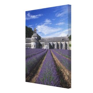 Senanque Abbey Gordes Vaucluse Provence Canvas Prints