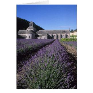 Senanque Abbey Gordes Vaucluse Provence Cards