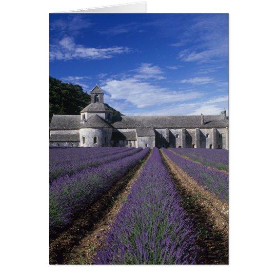 Senanque Abbey, Gordes, Vaucluse, Provence, Card