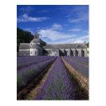 Senanque Abbey, Gordes, Vaucluse, Provence, Postcard