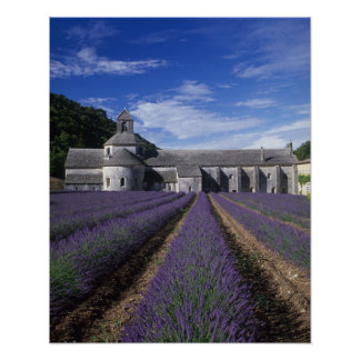 Senanque Abbey Gordes Vaucluse Provence Print