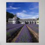 Senanque Abbey, Gordes, Vaucluse, Provence, Poster
