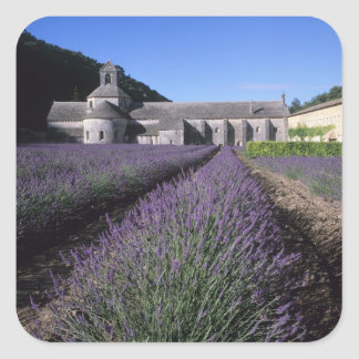 Senanque Abbey Gordes Vaucluse Provence Square Stickers
