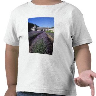 Senanque Abbey Gordes Vaucluse Provence Tee Shirt