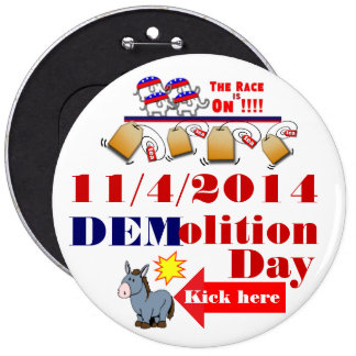 Senate race 2014 button