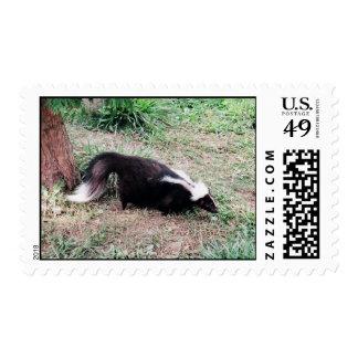 Send a Skunk Postage