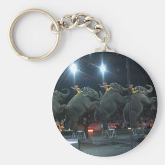 SEND IN THE ELEPHANTS keychain
