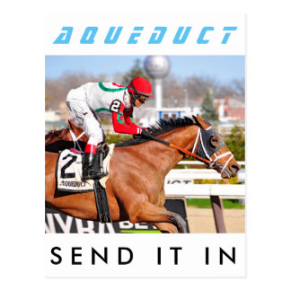 Send It In - John Velasquez Postcard