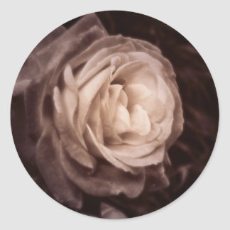 Send me a rose classic round sticker