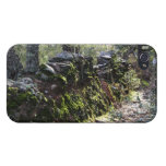 Sendero cubierto de naturaleza en la sierra iPhone 4/4S carcasas