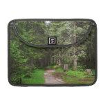sendero en bosque funda macbook pro