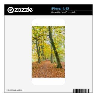 Sendero en el bosque cubierto con las hojas caidas skins para eliPhone 4S