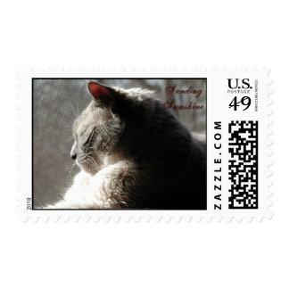 sending sunshine postage