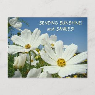 Sending sunshine cards zazzle sending sunshine smiles postcard valentines m4hsunfo