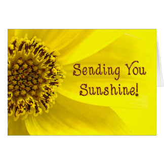 Sending Sunshine - SUNFLOWER - BRIGHT Card