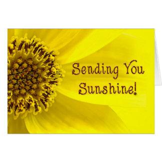 Sending Sunshine - SUNFLOWER - BRIGHT Card