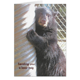'Sending you a bear hug' Note Card