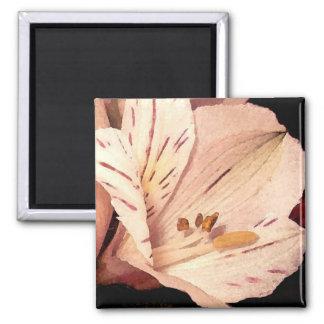 sending you a flower magnet