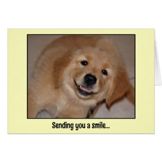 Sending you a smile...smiling golden pup greeting cards