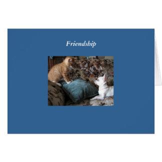 Sending you my prayers greeting card