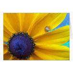 Sending you some sunshine greeting card