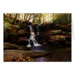 Seneca Creek Falls Cards