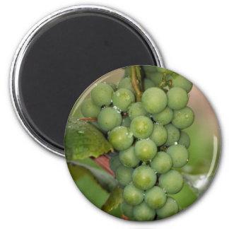 Seneca Grapes 2 Inch Round Magnet