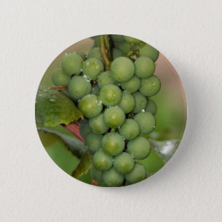 Seneca Grapes Pinback Button