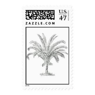 Senegal Date Palm Tree Postage
