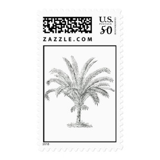 Senegal Date Palm Tree Postage