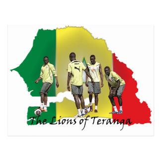 Senegal Futbol Post Card