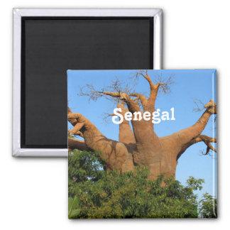 Senegal Imán De Nevera