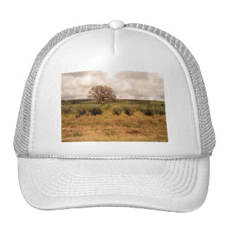 Senegal Landscape Trucker Hats