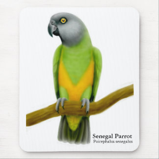 Senegal Parrot Mousepad