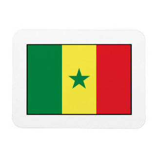 Senegal – Senegalese Flag Rectangle Magnets