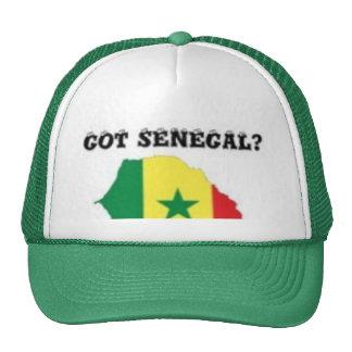 SENEGAL/SENEGALESE MAP T-SHIRT AND ETC MESH HAT