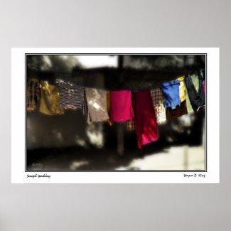 Senegal Washday Poster